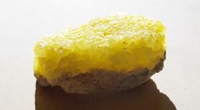 Sulphur (Sulph.) – žveplo